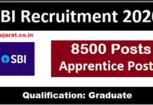 sbi apprentice recruitment
