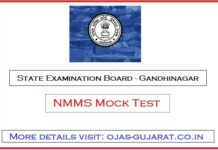 SEB NMMS Mock Test
